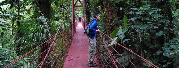 Giant suspension bridge Costa Rica The Ten Greatest All Nude Fight Scenes in Comics
